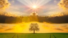 Hz İsa (As)'ın Nüzülüne İnanmak Vacib Midir?